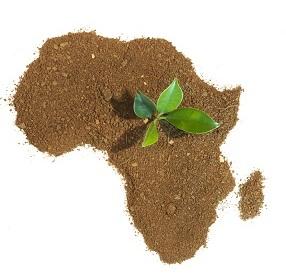afrika kos