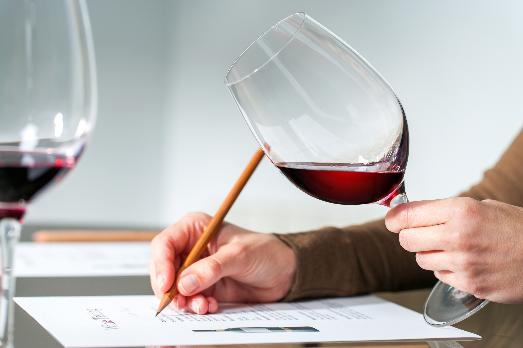 Red wine tasting