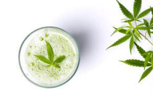 cannabis trend